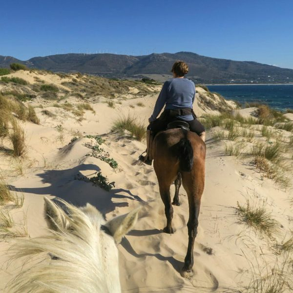 Horse Riding, Multi-Activity camp