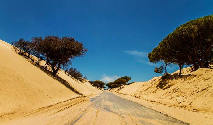 Punta Paloma,white sand dune in Tarifa, Spain