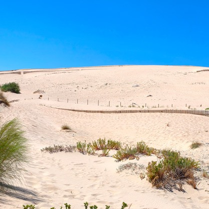 Sandy dune like in the Sahara, Tarifa
