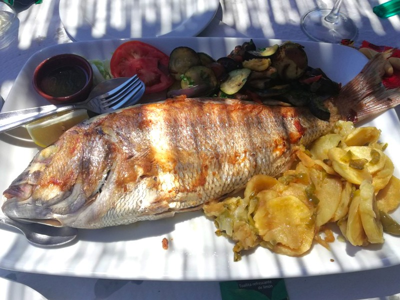 El Mirlo-Spanish Restaurante-tarifa-Seafood-Punta Paloma-Valdevaqueros beach