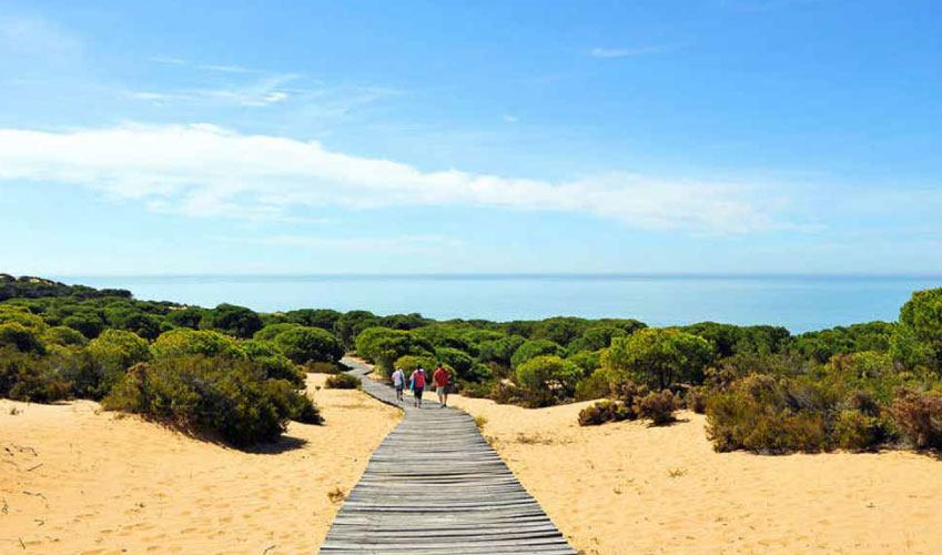 Doñana Natural Park In Andalusia