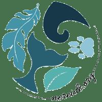 Nereide Association Ocean Protection