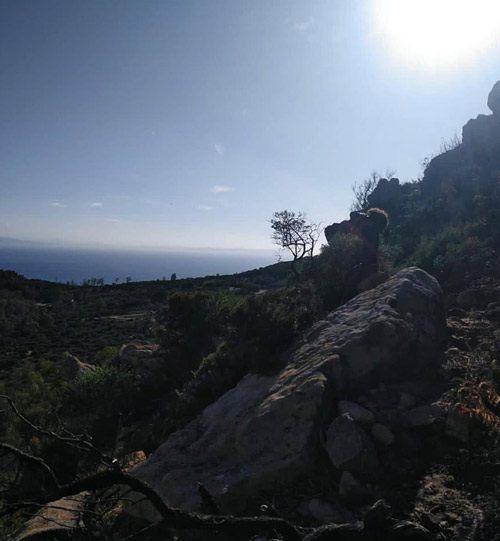 Hiking ou balade à pied dans les parcs de Tarifa