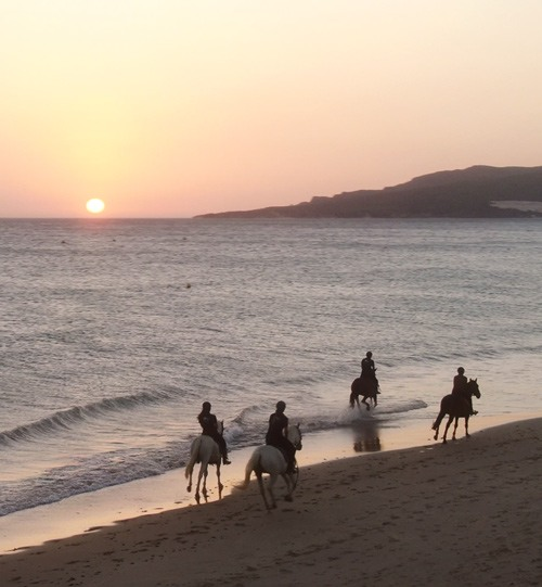 Balade à cheval sur les plages de Tarifa