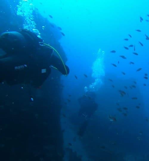 Plongée sous marine à Tarifa ou excursion en snorkeling